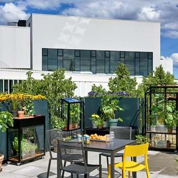 Det urbane liv spirer i nye små bydrivhuse