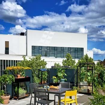Das Urbanleben gedeiht in neuen kleinen Stadtgewächshäusern
