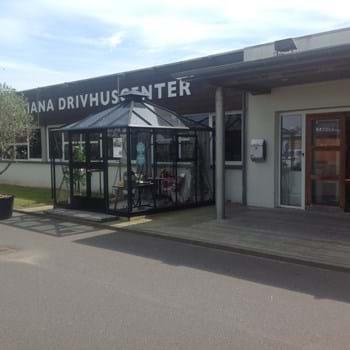Juliana Drivhuscenter Odense